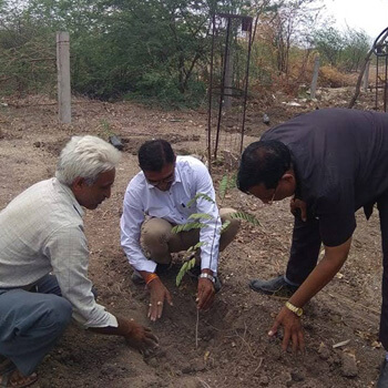 Water Conservation :  Tree Plantation